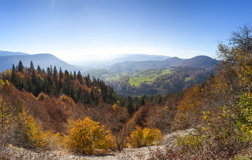 Champfromier_automne-38
